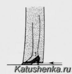 Длина расширенных брюк